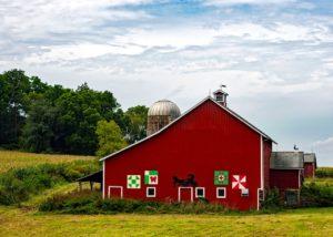 Bauernhof sucht Helfer – welche Tiere sind zu betreuen