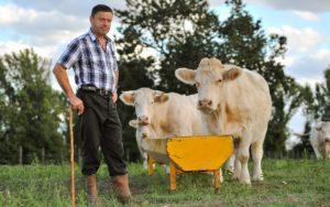 suche landwirtschaftlichen Mitarbeiter – Kosten reduzieren